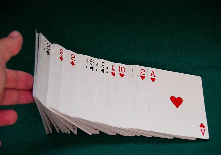 Learn How To Play Bluff